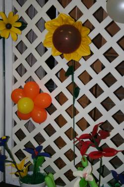 Cool balloon picture 42470